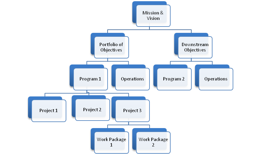 Figure 1 - where projects and programs fit