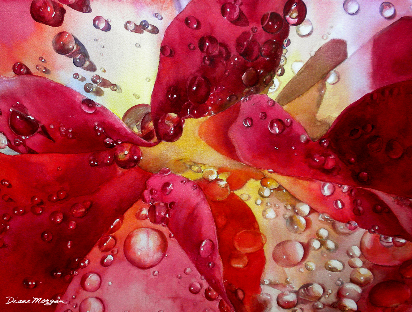Diane Morgan Raindrops on Roses watercolor.jpg