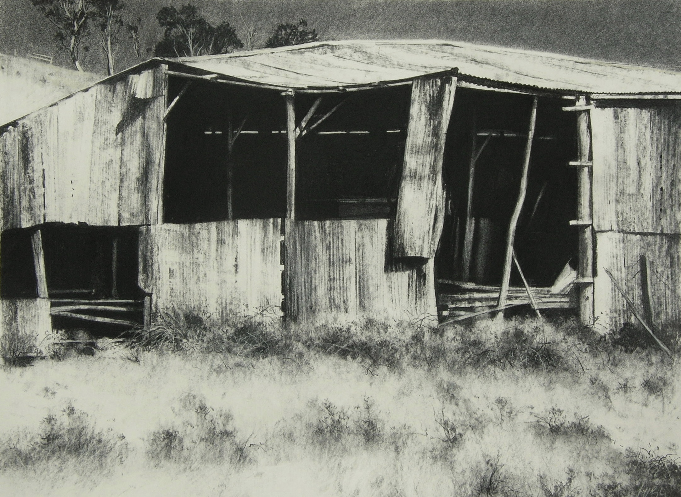 Shed, Georges Plains