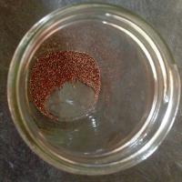 sprouting101-2dr.karen.jpg