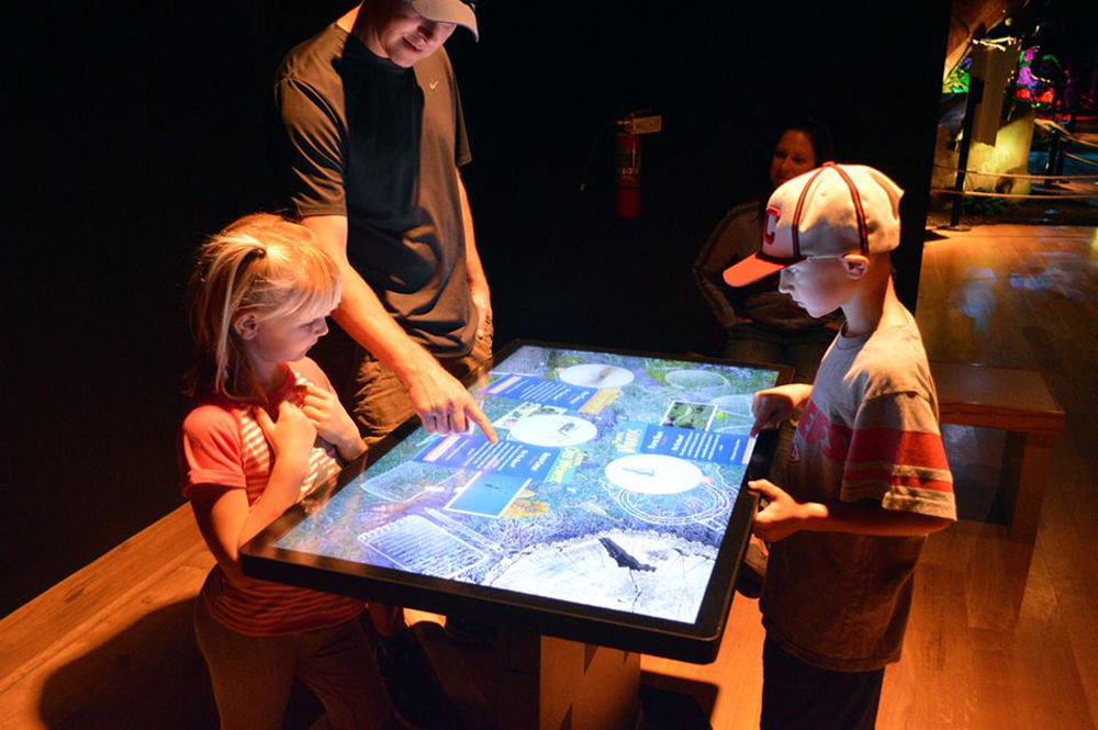 The Xtreme Bugs touch table at Dinosaurs Alive! in Kansas City, Missouri.Photo courtesy of Dinosaurs Unearthed.