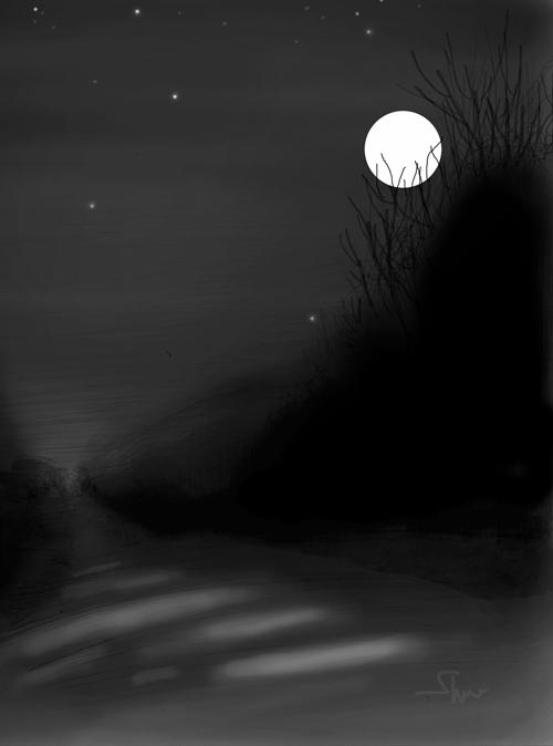 moon light.png