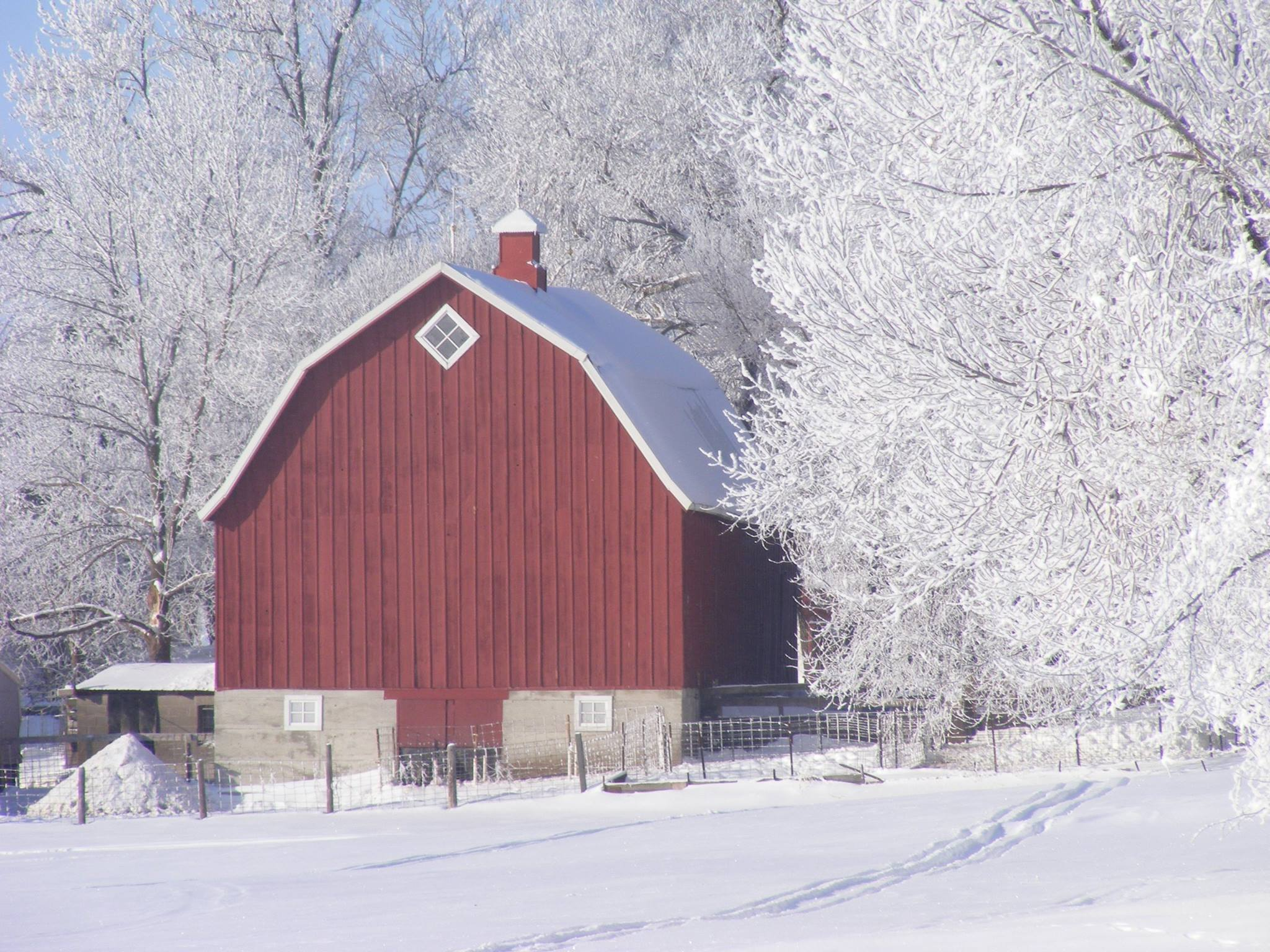 Barns in Winter, 2nd Place - Helen Zuelch