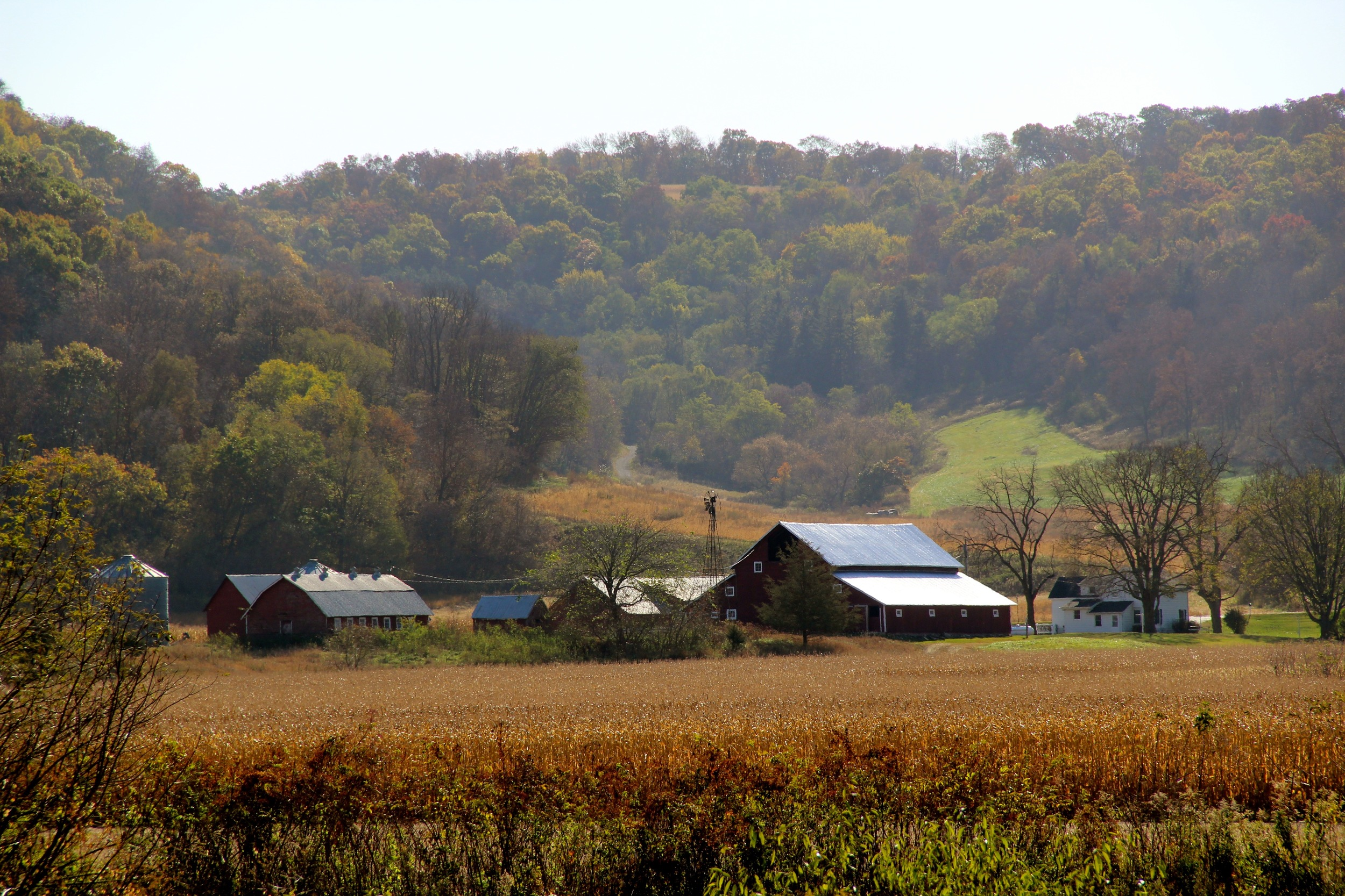 2nd Place Autumn Barns - Joni Mehus
