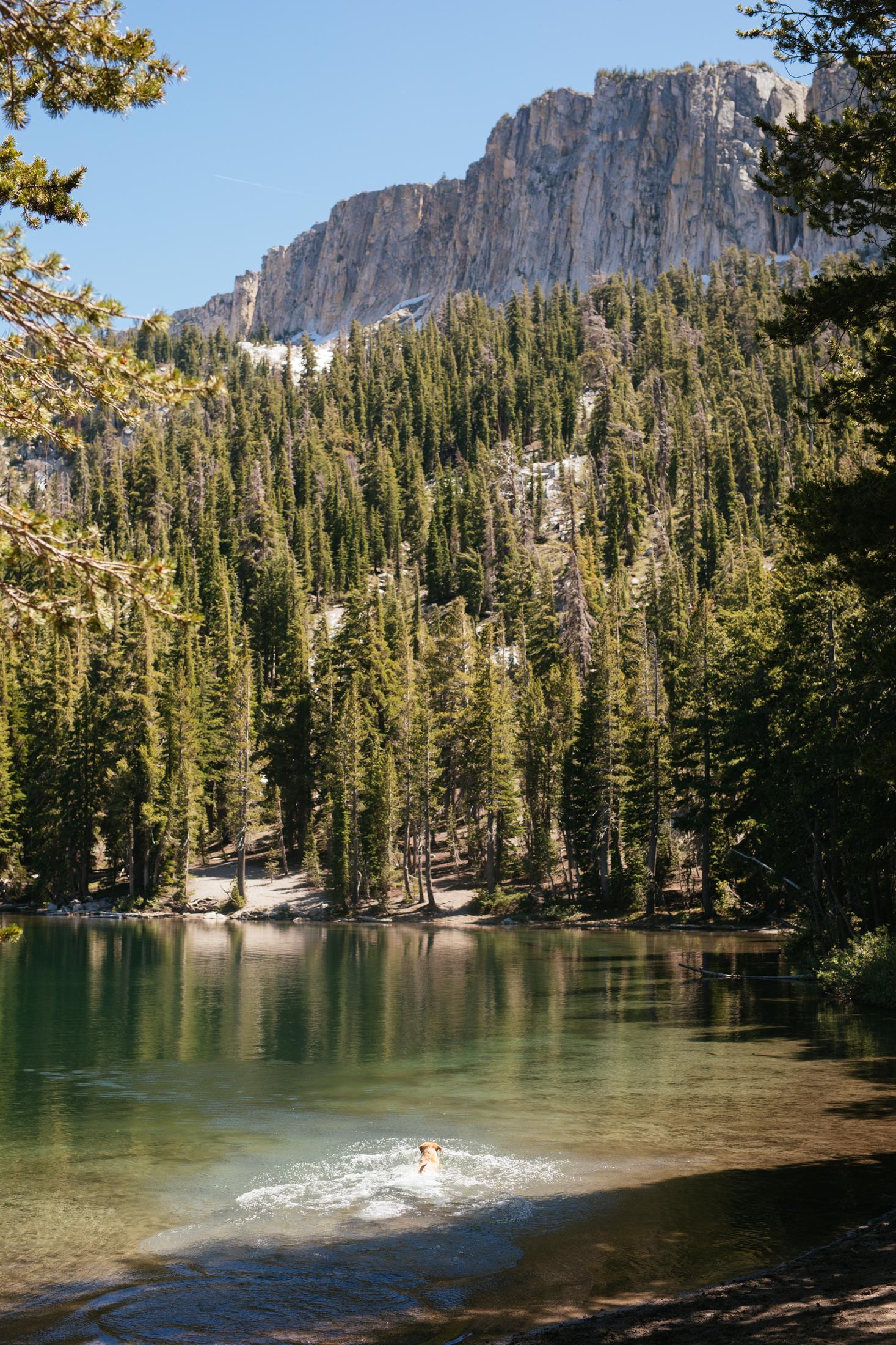 Day 12 - Mammoth Lakes, California