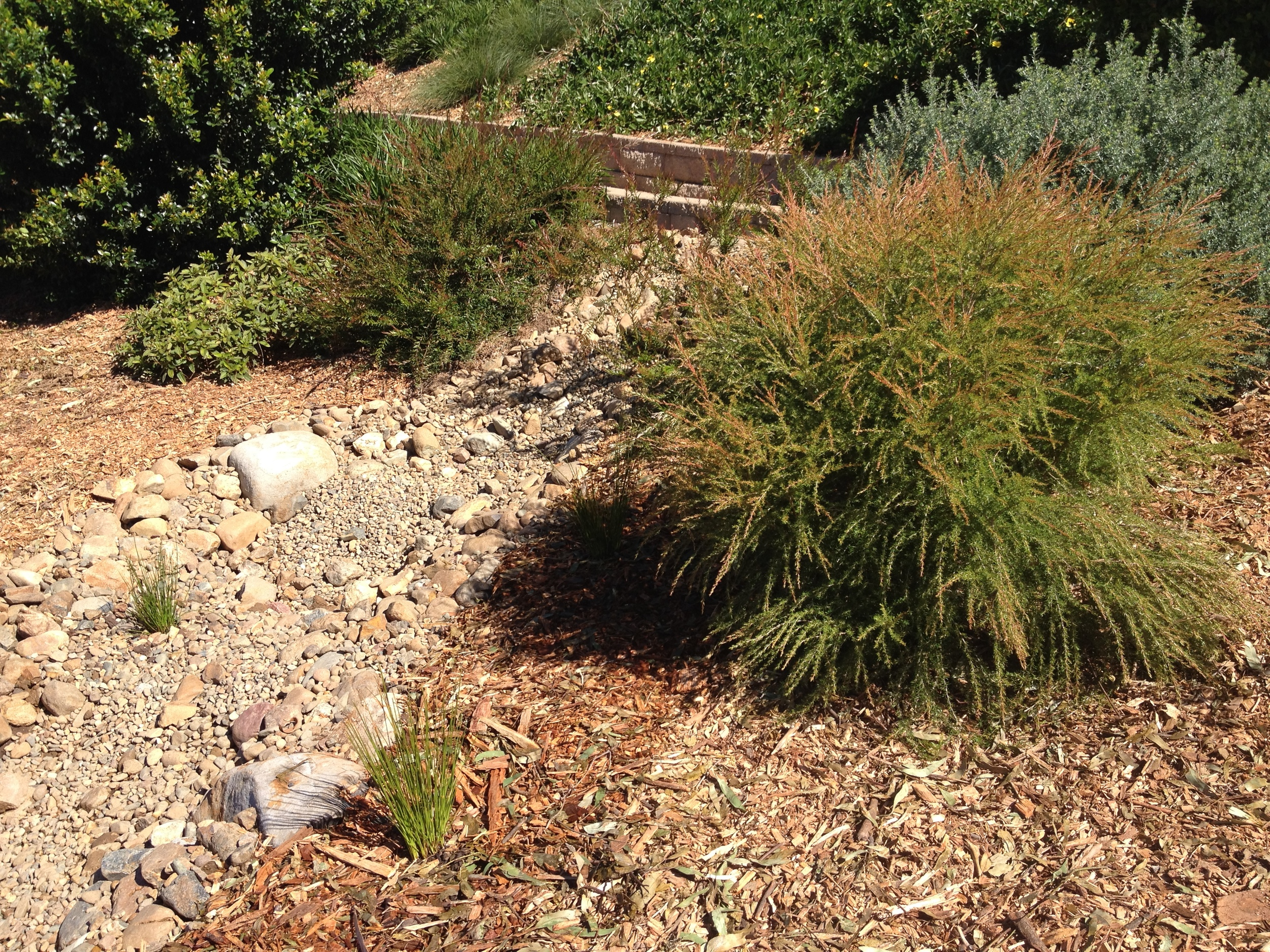 Second Completed Dry Creek Bed