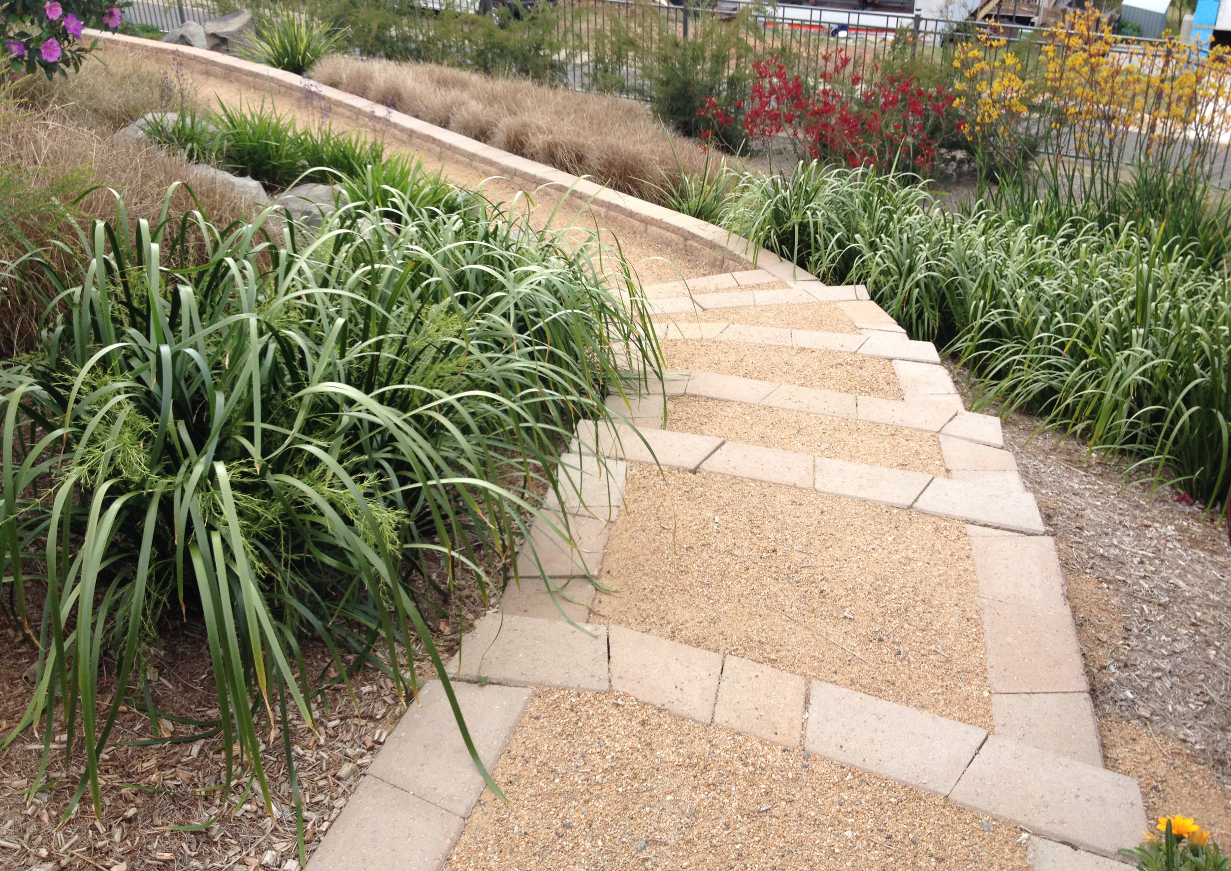Decomposed granite path steps australian native plants.jpg