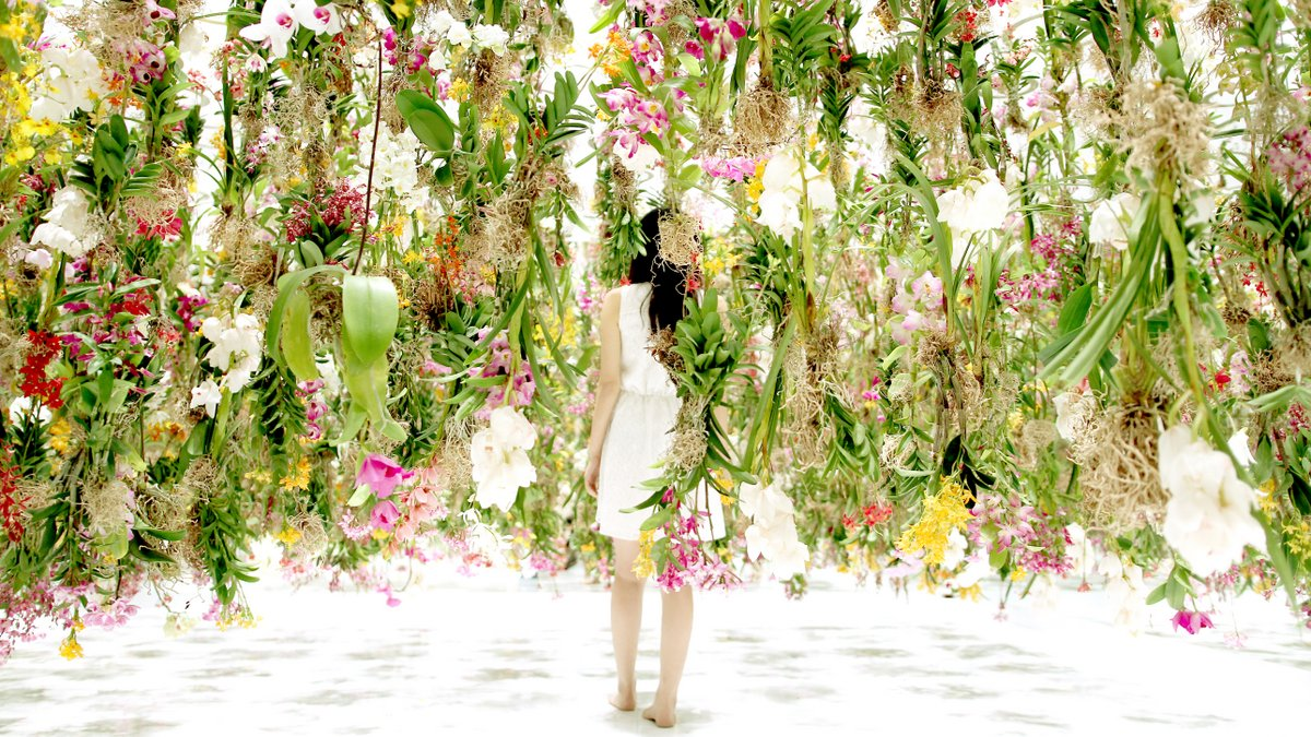 "installazione ""Floating flowers""by Japanese Art Collective teamLab"