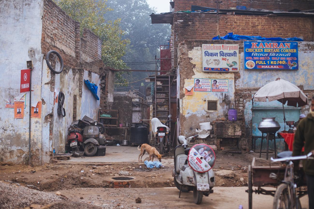 India-6519.jpg