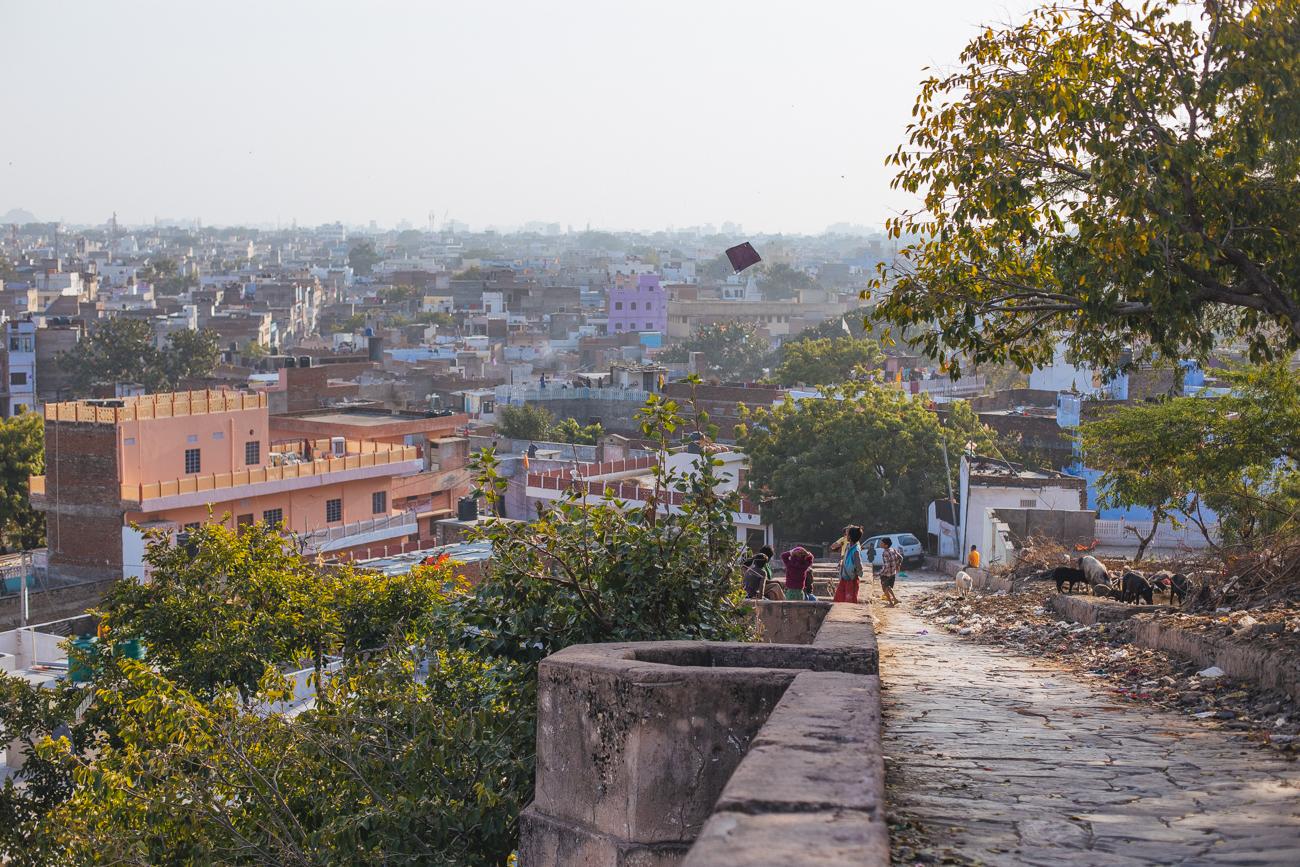India-6800.jpg