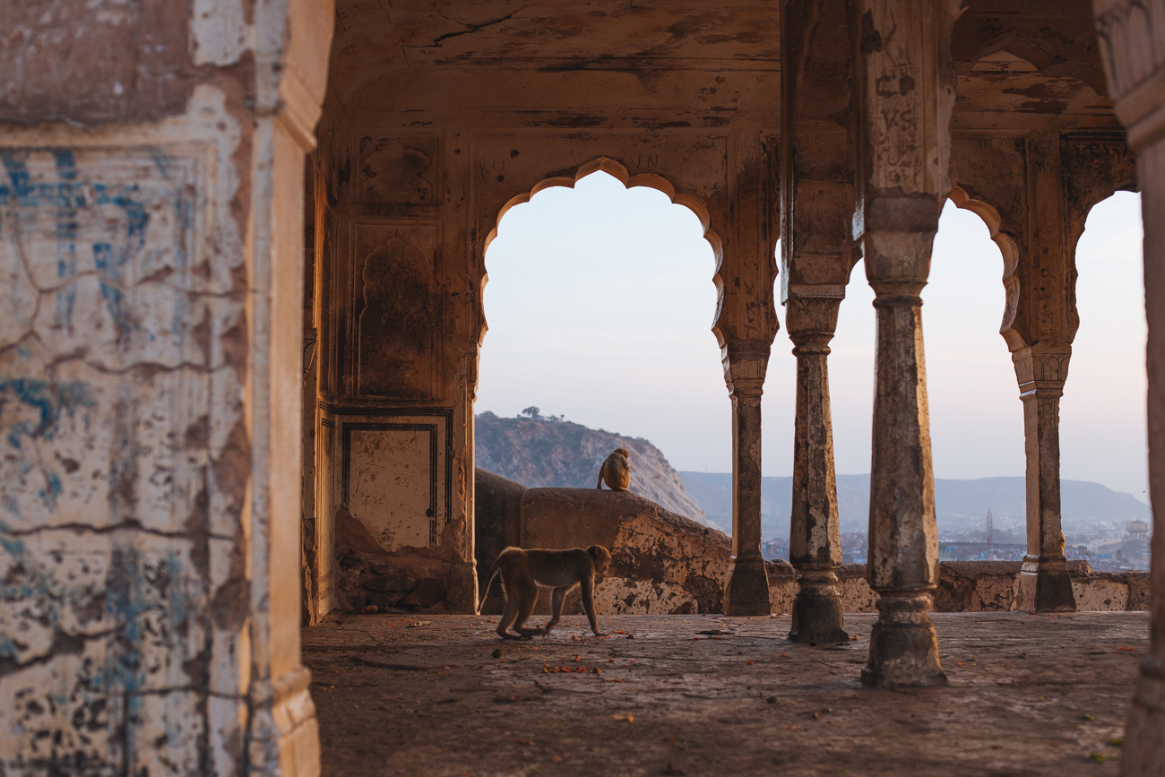 India-6949.jpg