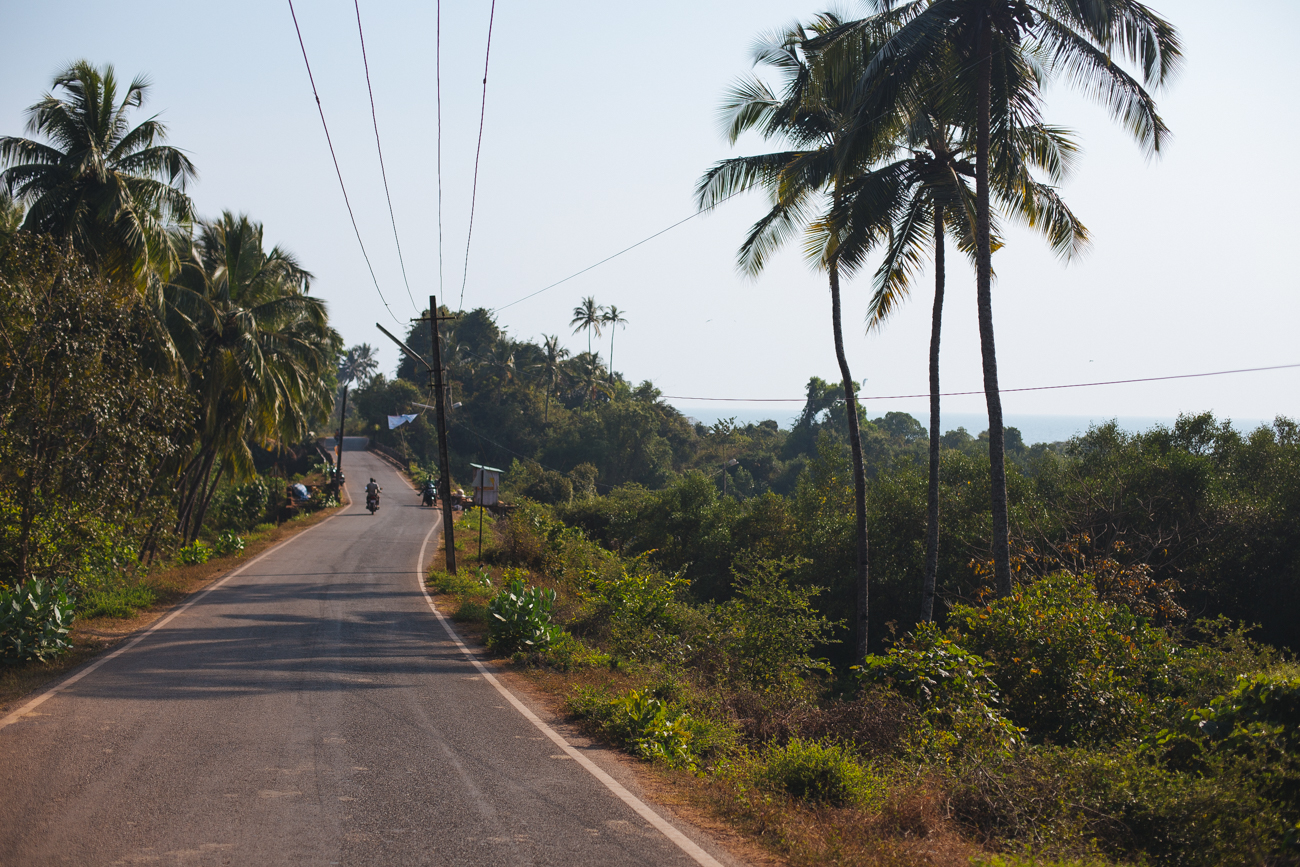 India-7838.jpg