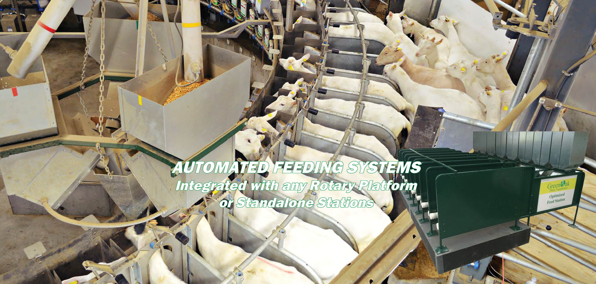 AUTOMATED FEEDING SYSTEMS WL.jpg