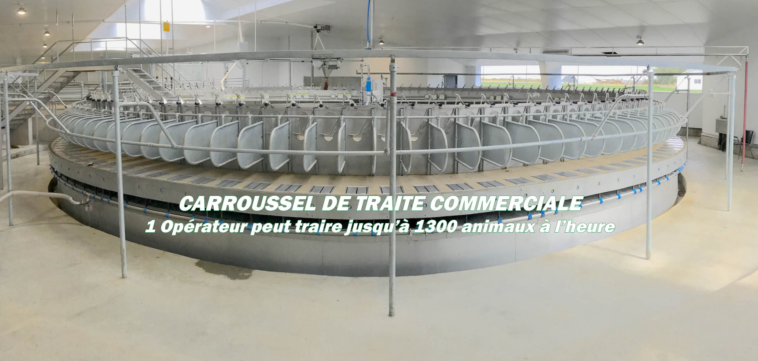 COMMERCIAL ROTARy MILKING PARLOURS RF.jpg