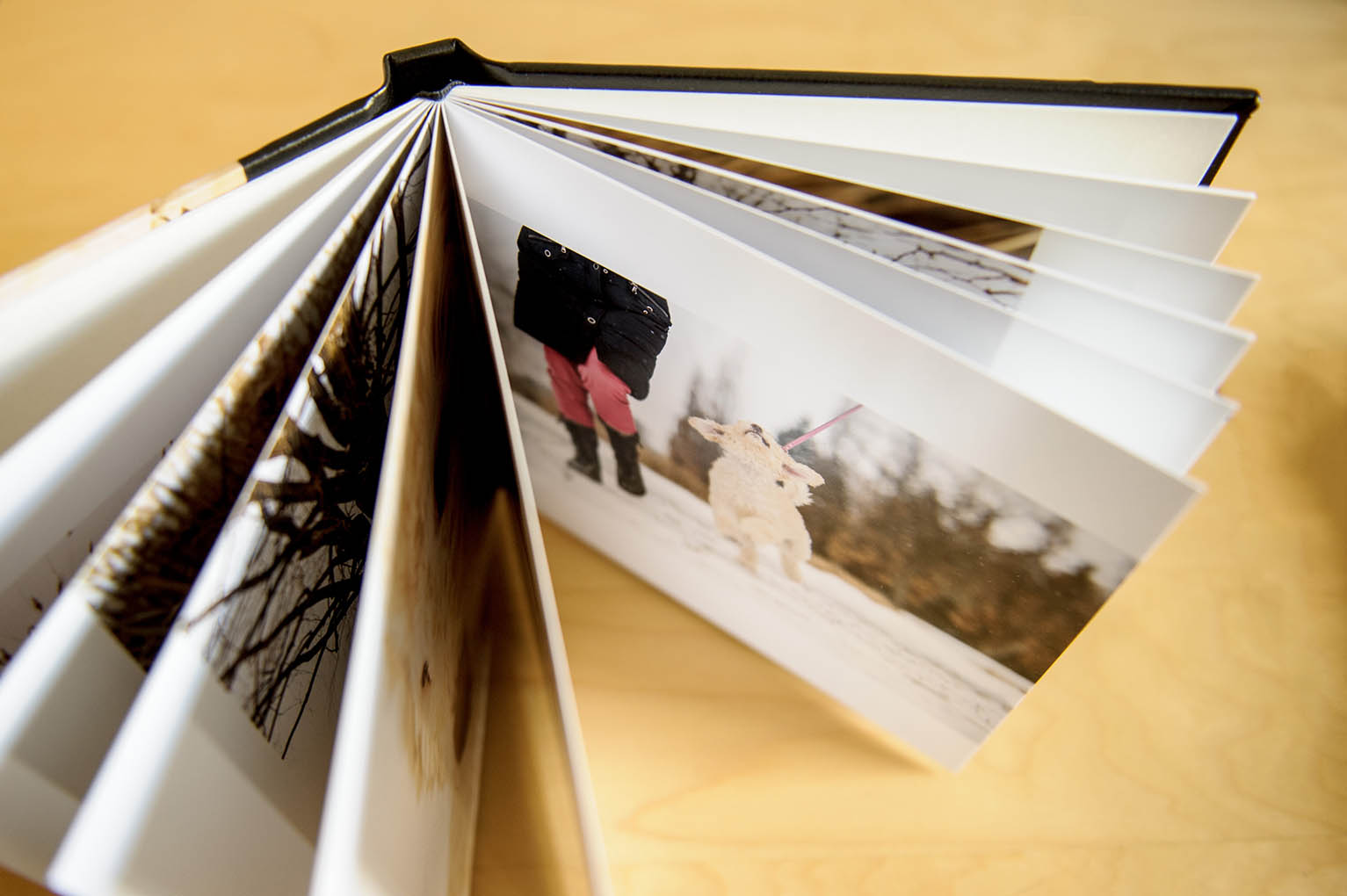 albums-essentiel-4494-web.jpg