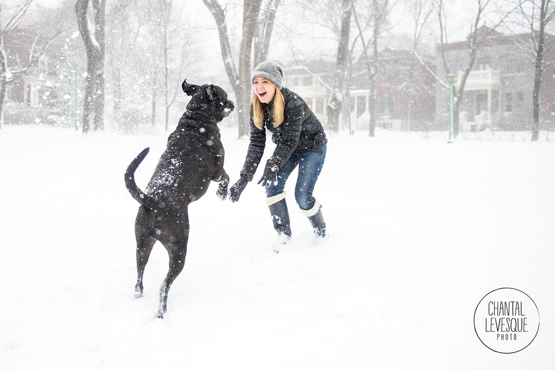 dog-playing-snow-7779.jpg