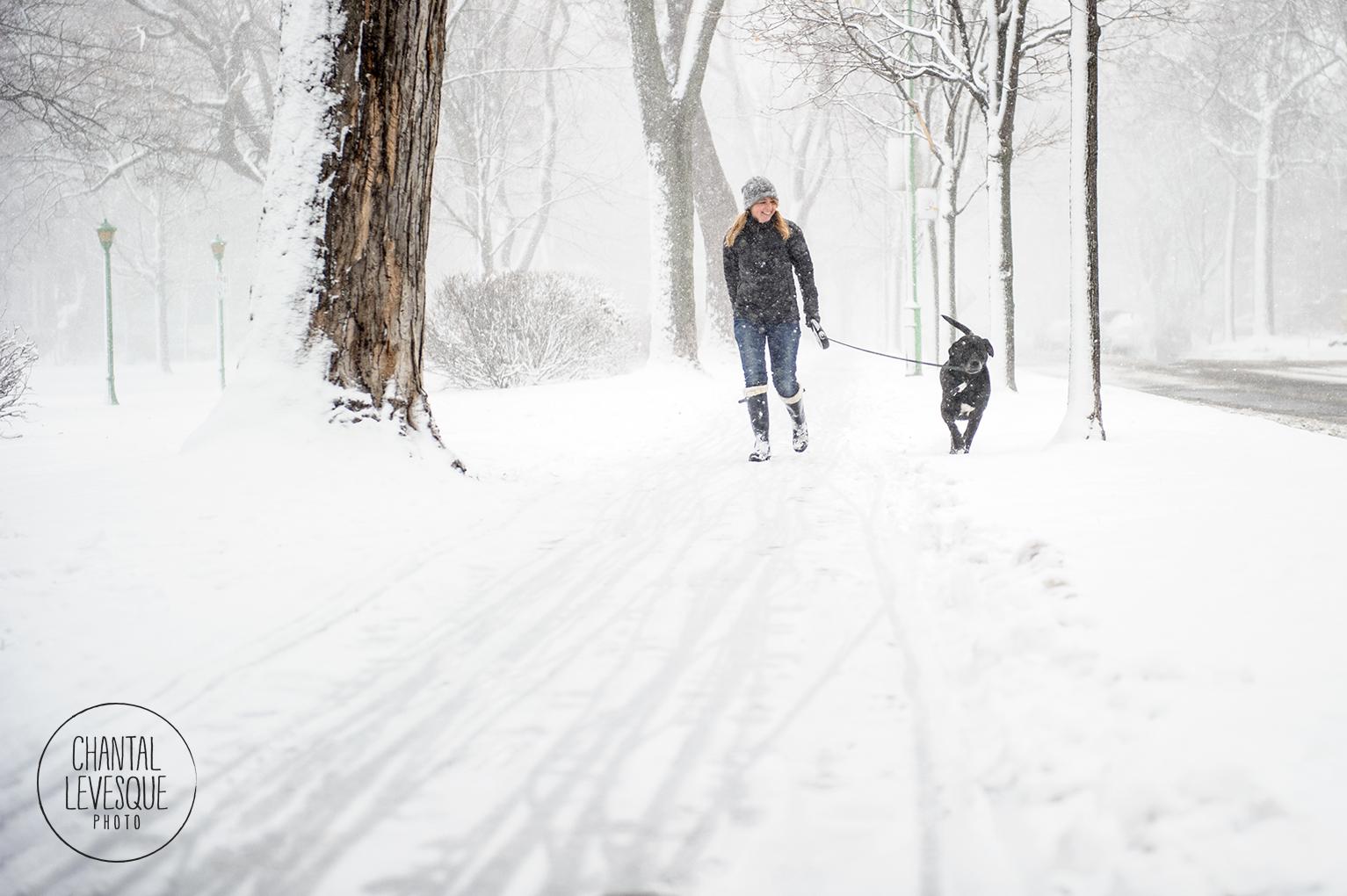 dog-walk-snow-7986.jpg