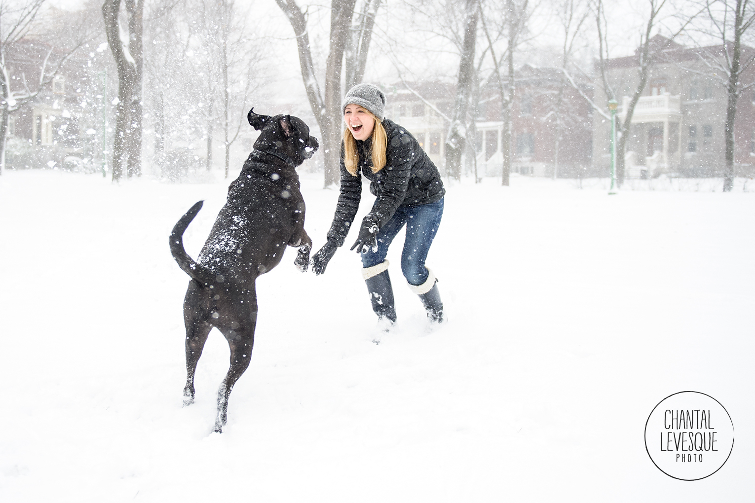 black-dog-woman-play-snow-outremont