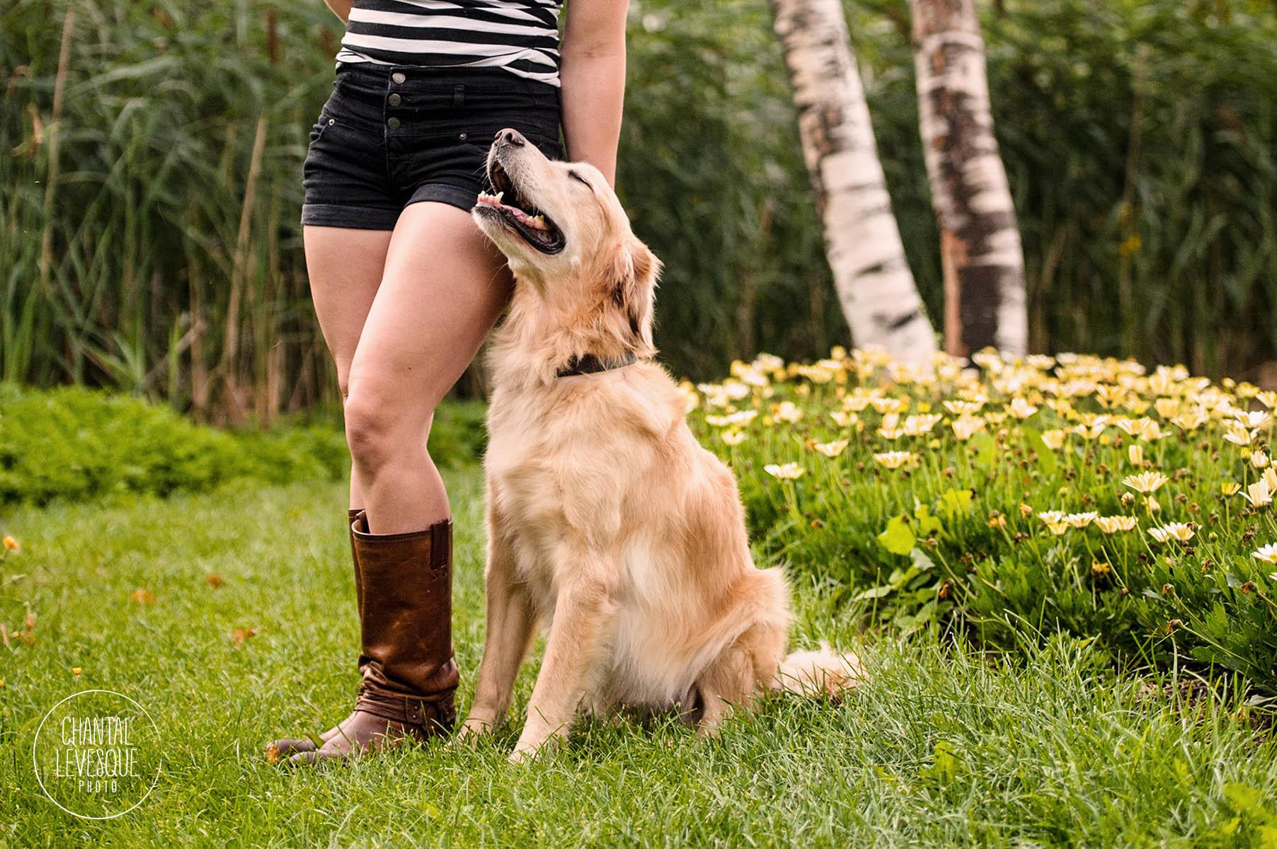lifestyle-dog-photography-canada