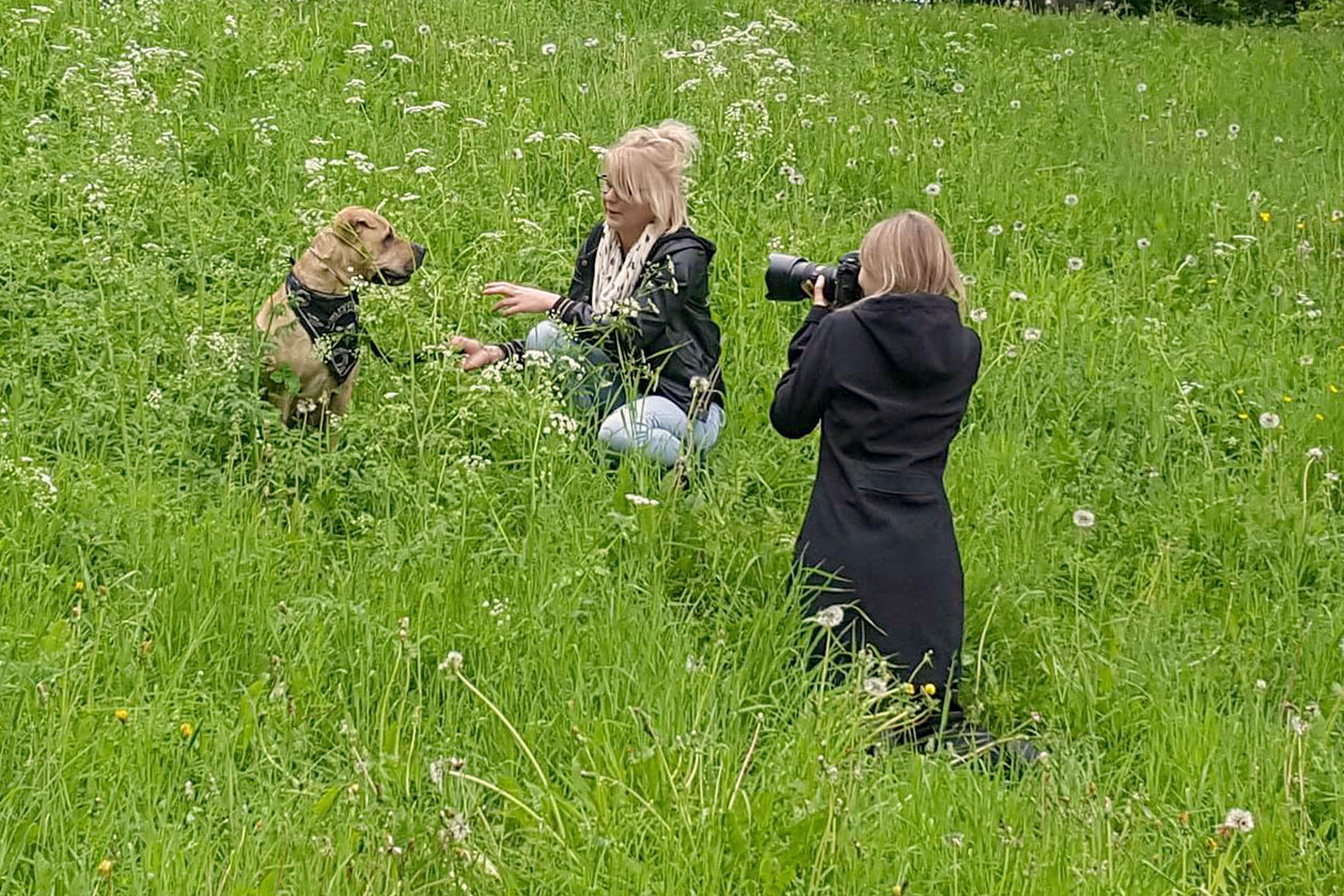 behind-the-scenes-dog-photography