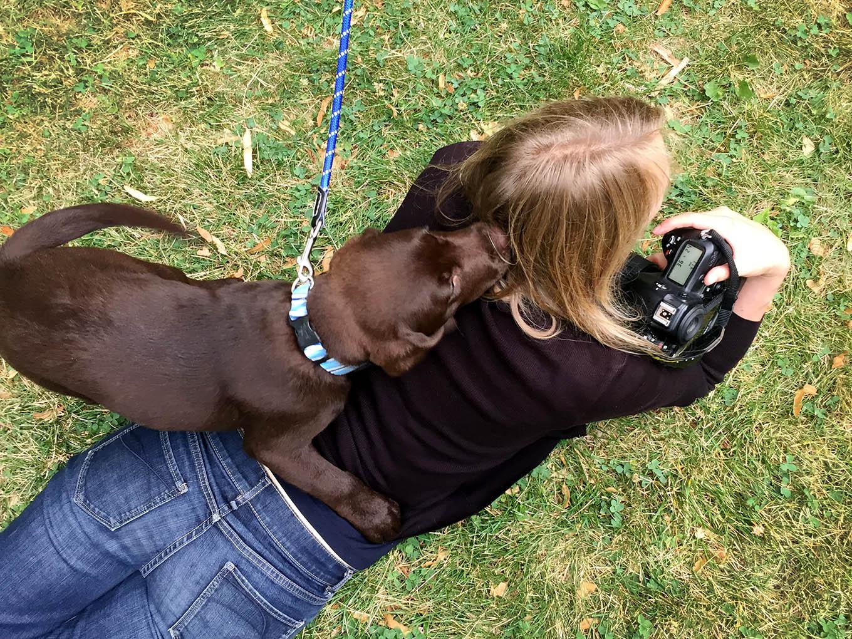 puppy-photo-shoot