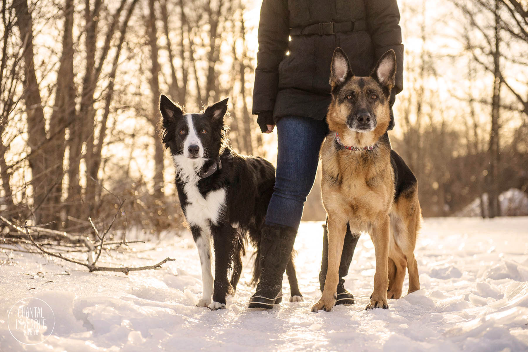 golden-hour-winter-photo-shoot.jpg
