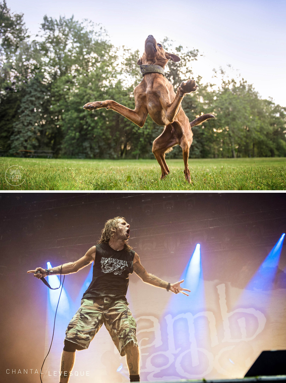 Tyson / Lamb of God