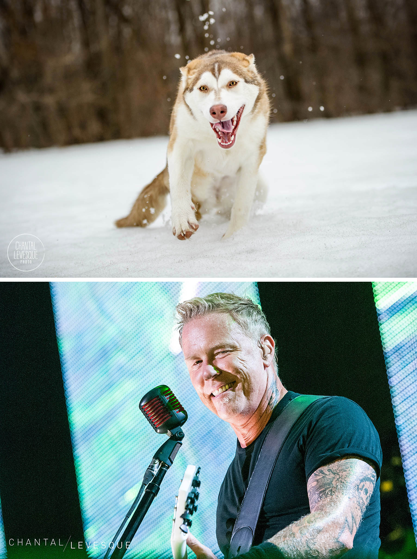 Reska / Metallica
