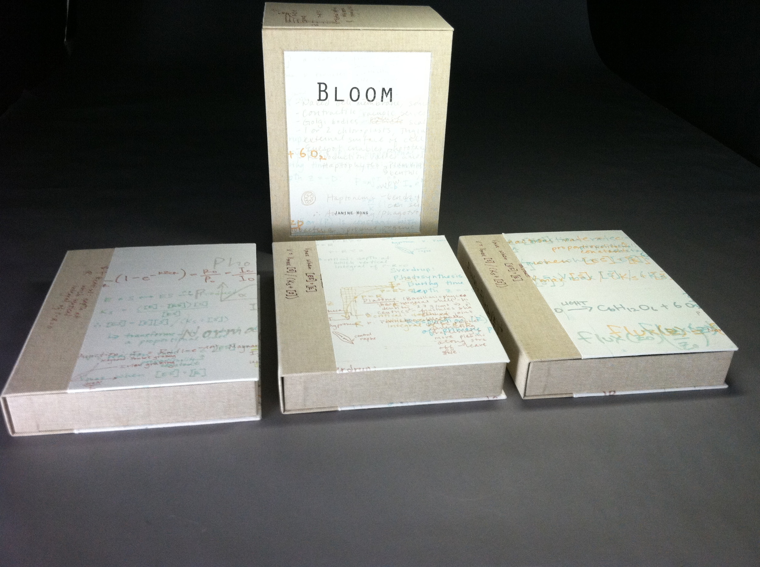 Bloom: Prelude, Bloom, Consequences