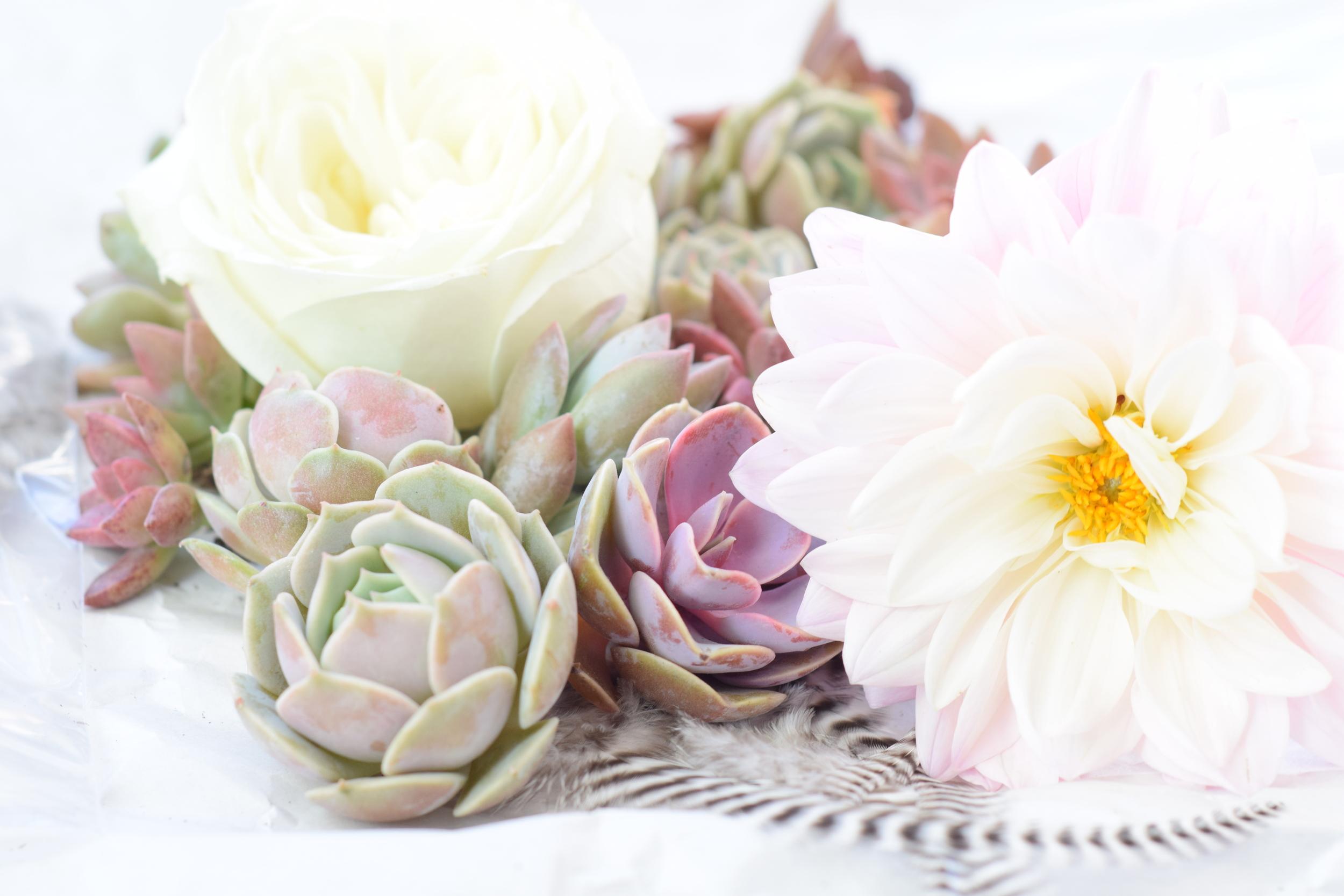Succulents, Dahlias, Feathers, Houston Boho Wedding