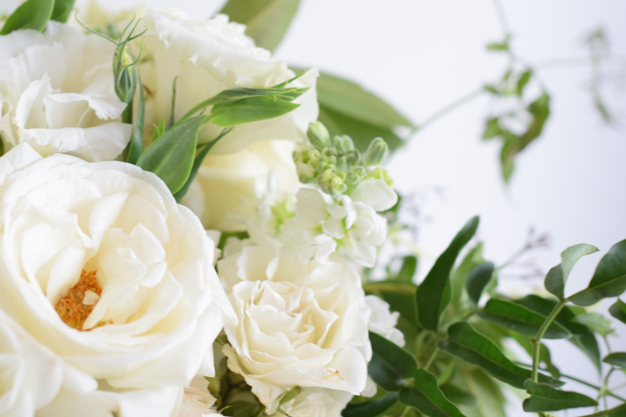 Up close & personal with an all white bouquet by Maxit Flower Design.