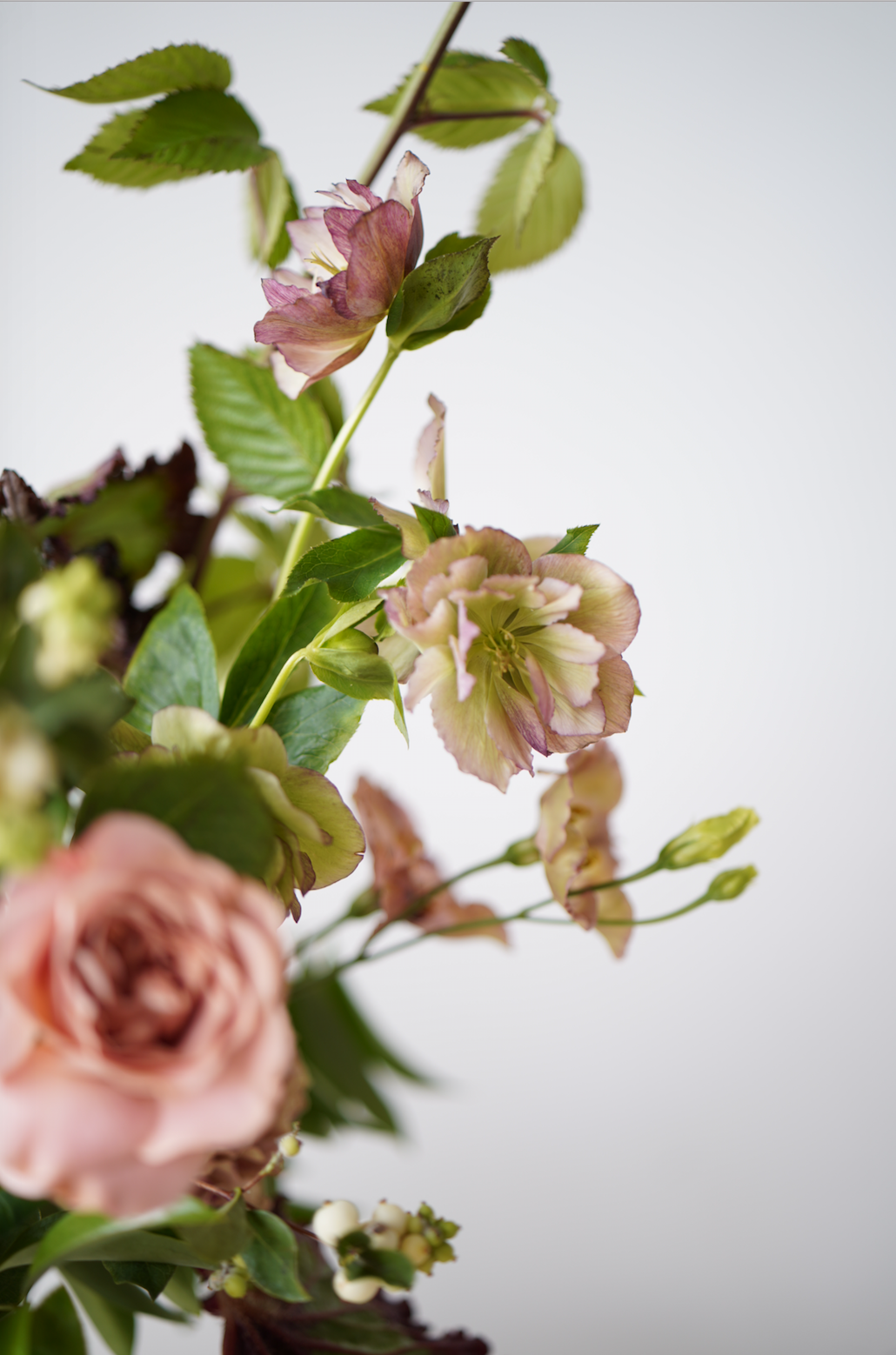 Helleborus-Wedding-Event-Maxit-Flower-Design-2018.png