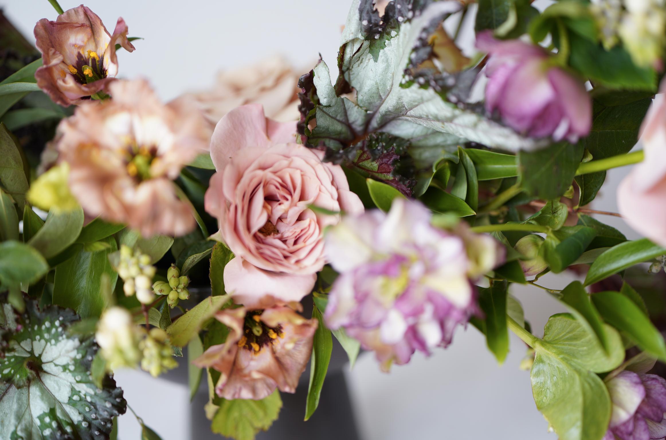 Begonia-Garden-Rose-Wedding-Flowers.png