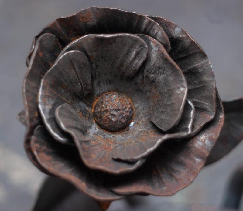 rosehead.jpg
