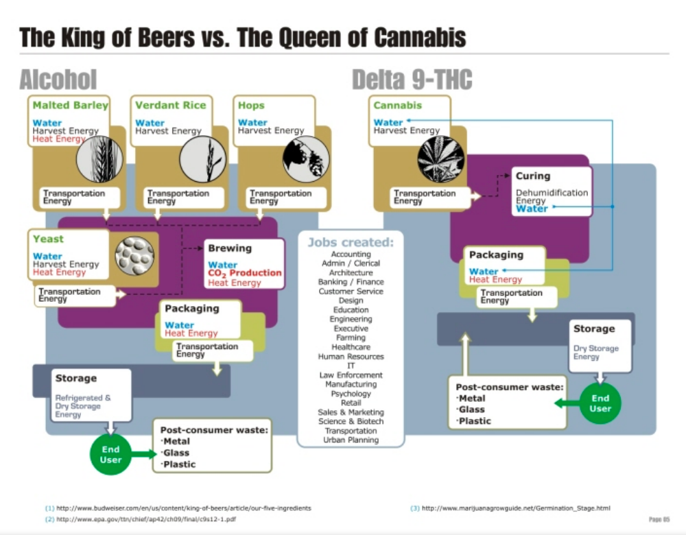 The King Of Beers vs The Queen Cannabis