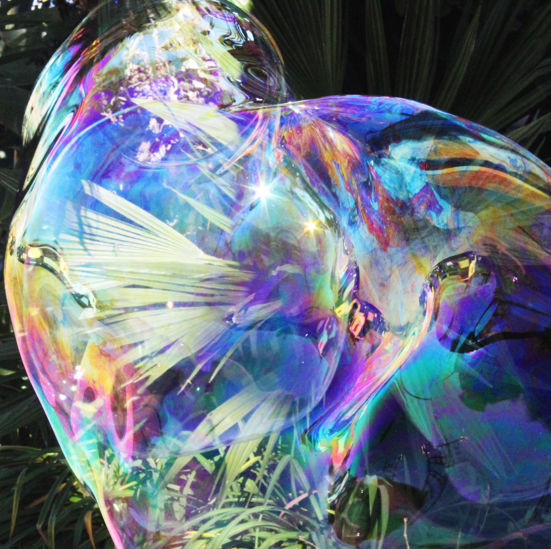 Siena_bubble close up sparkle.jpg