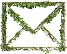 envelope made of ivy vines and leaves