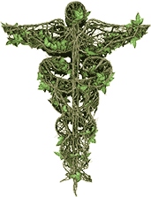 medical symbol made of ivy vines and leaves