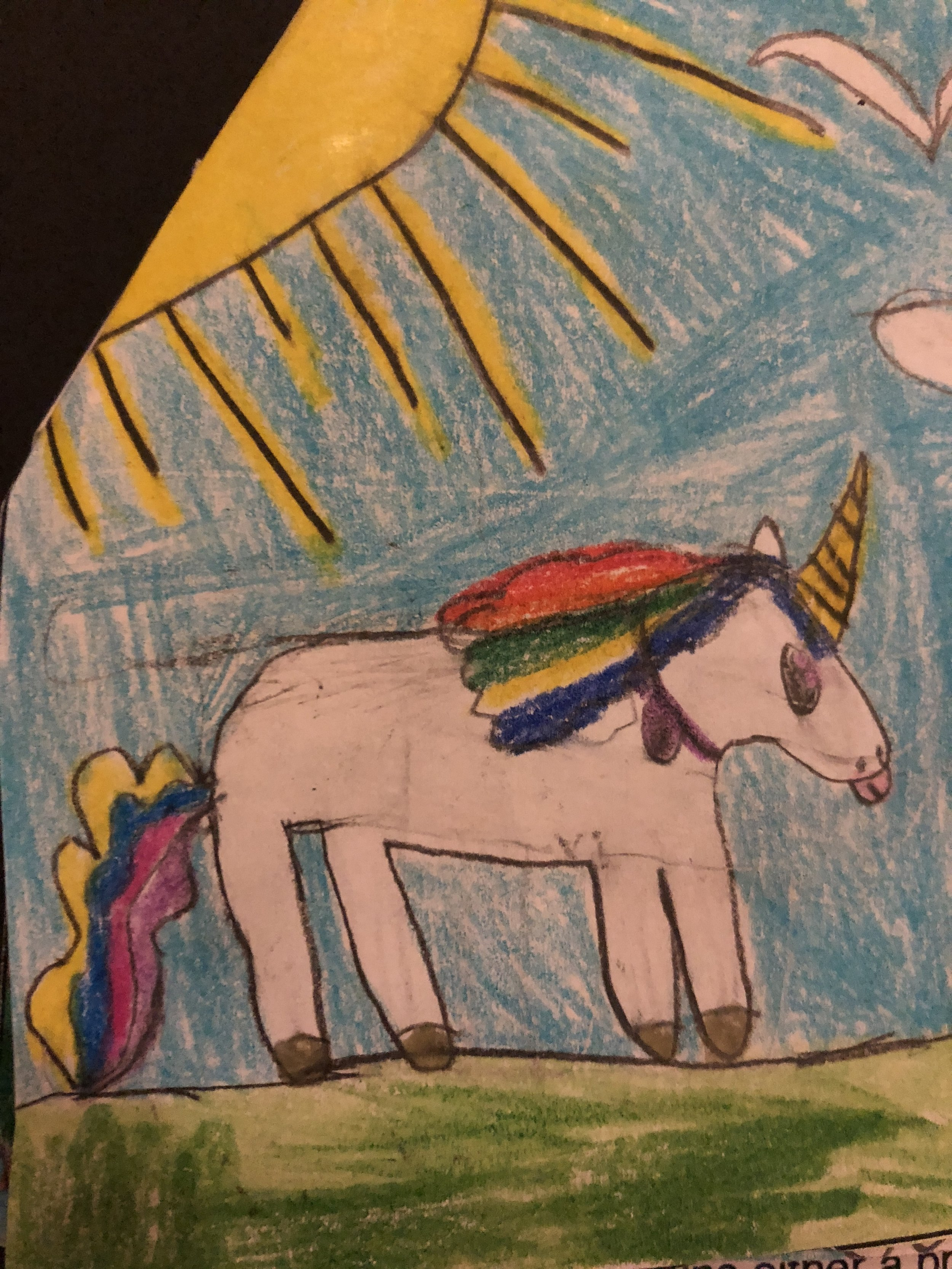 addison's original illustration for the unicorn design