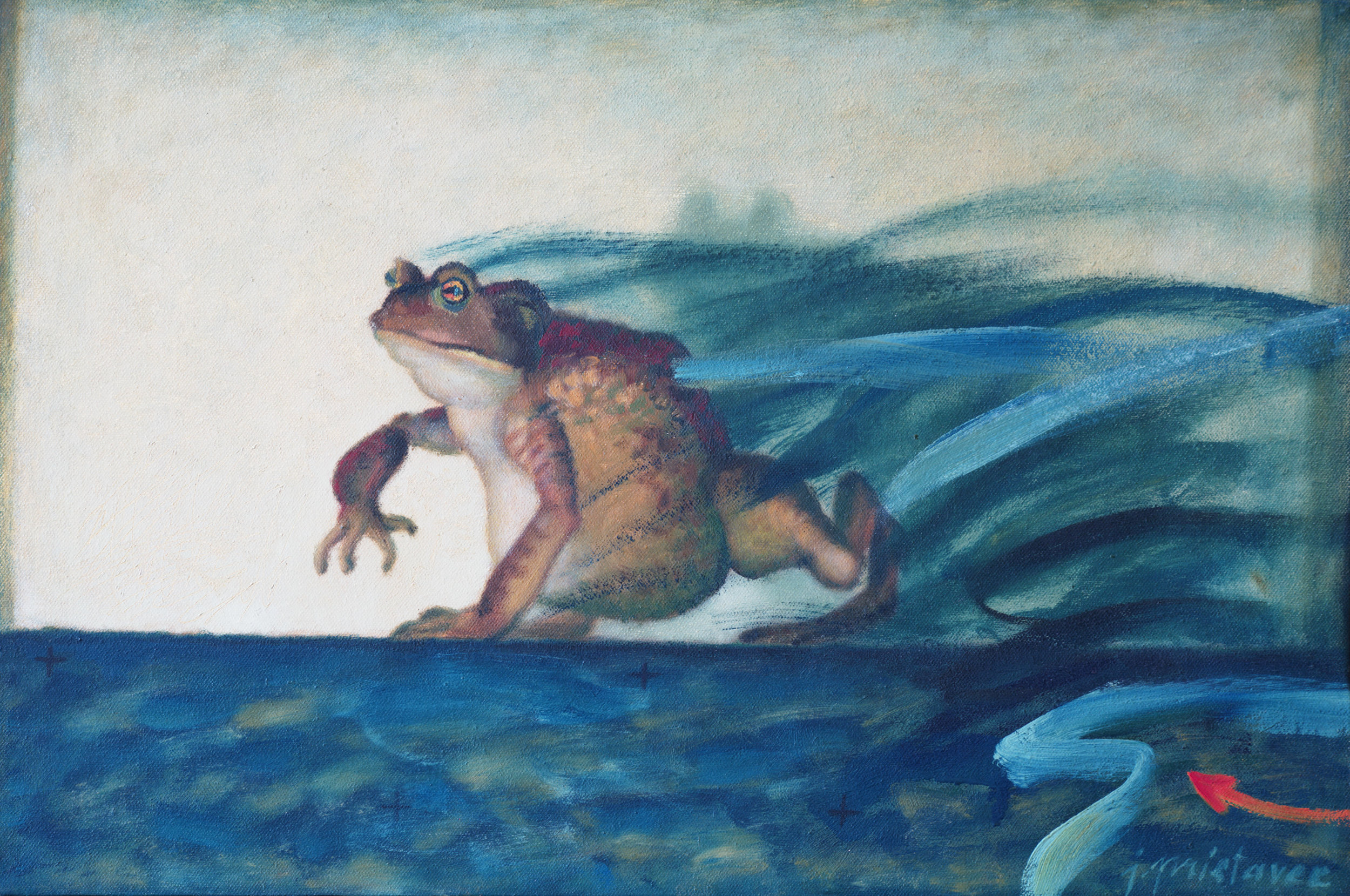 Frog  / 1975 / oil on canvas / 60 x 40 cm