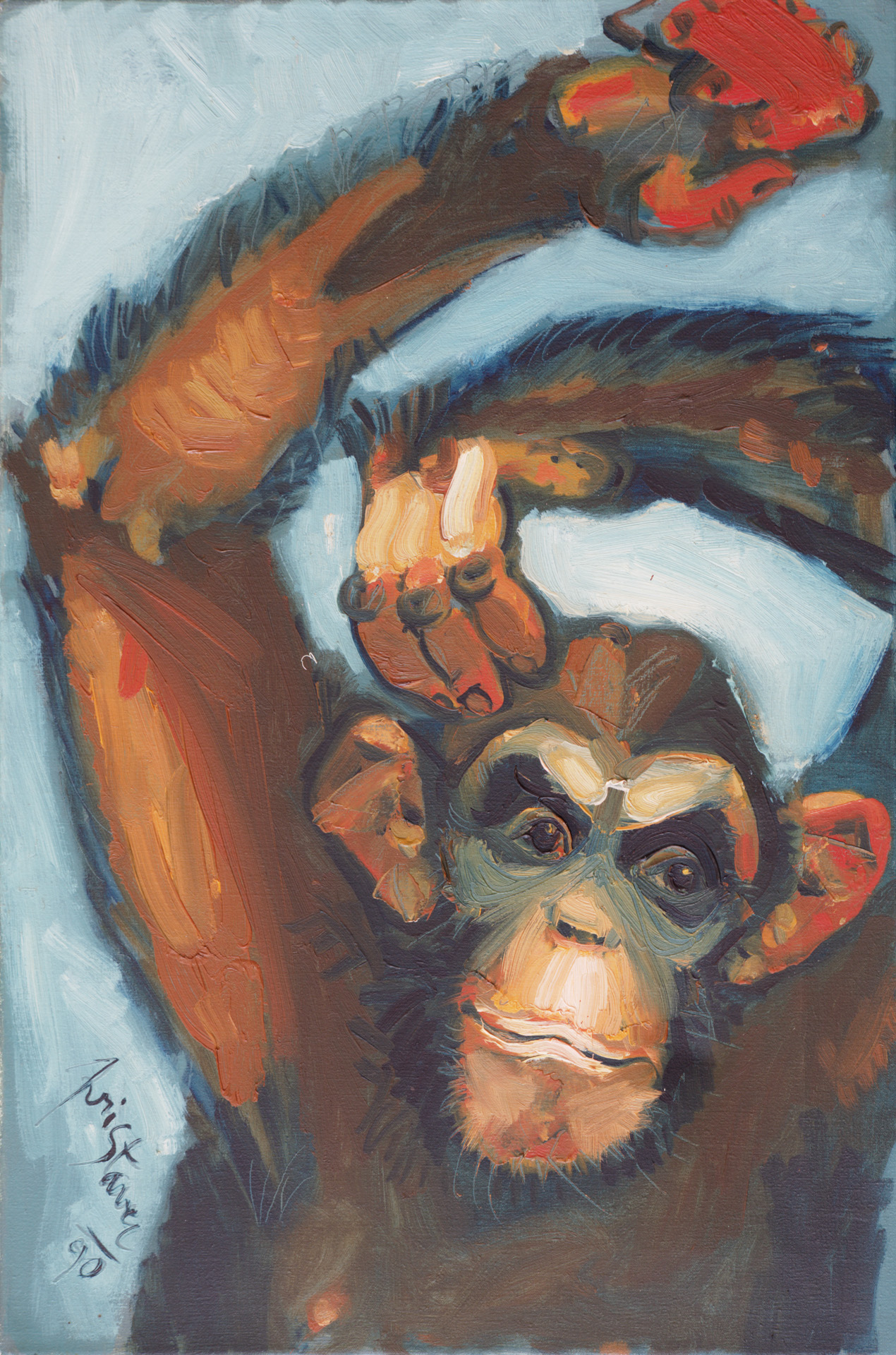 Chimpanzee  / 1990 / oil on canvas / 40 x 60 cm