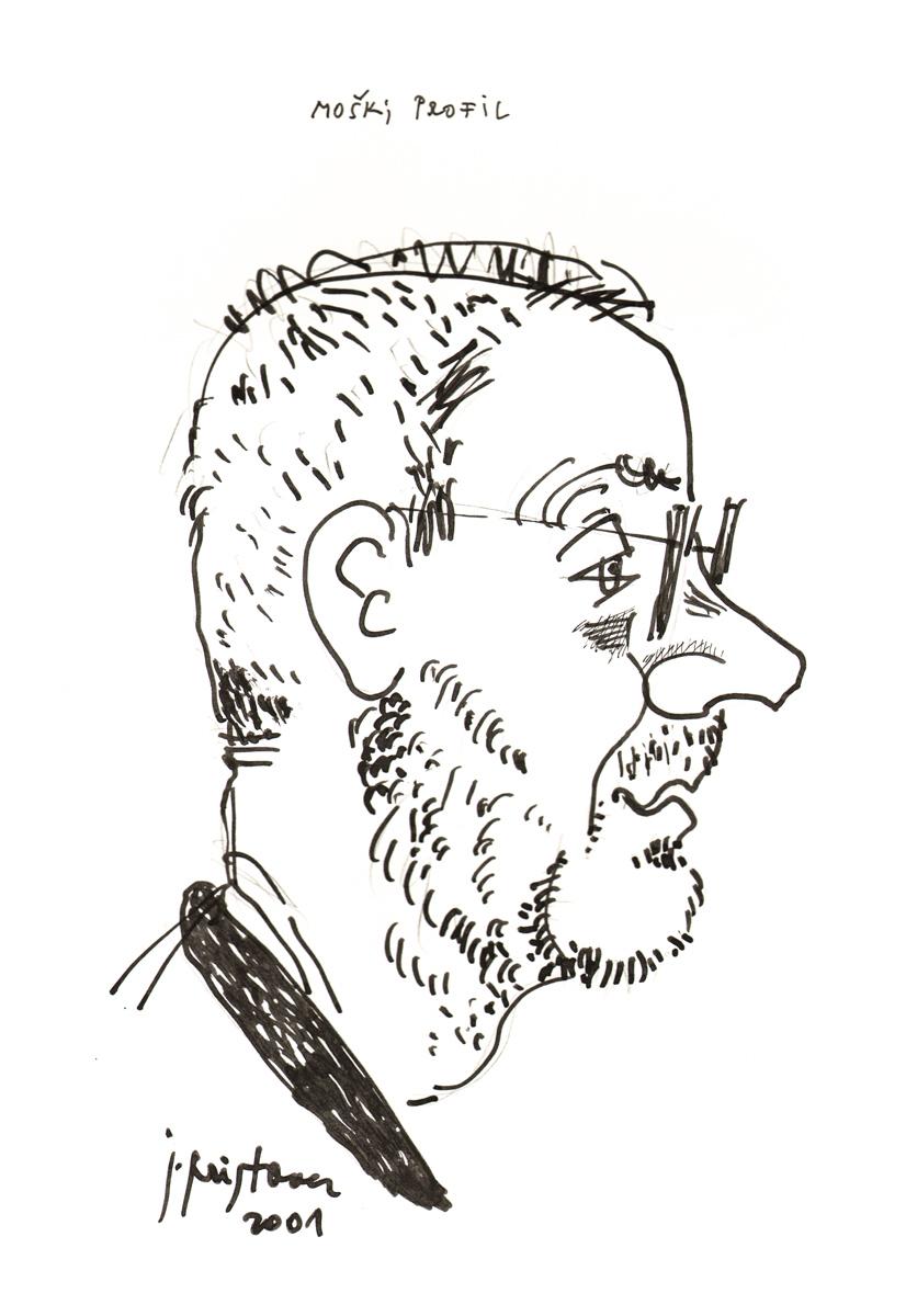 2001_profil_moski.jpg