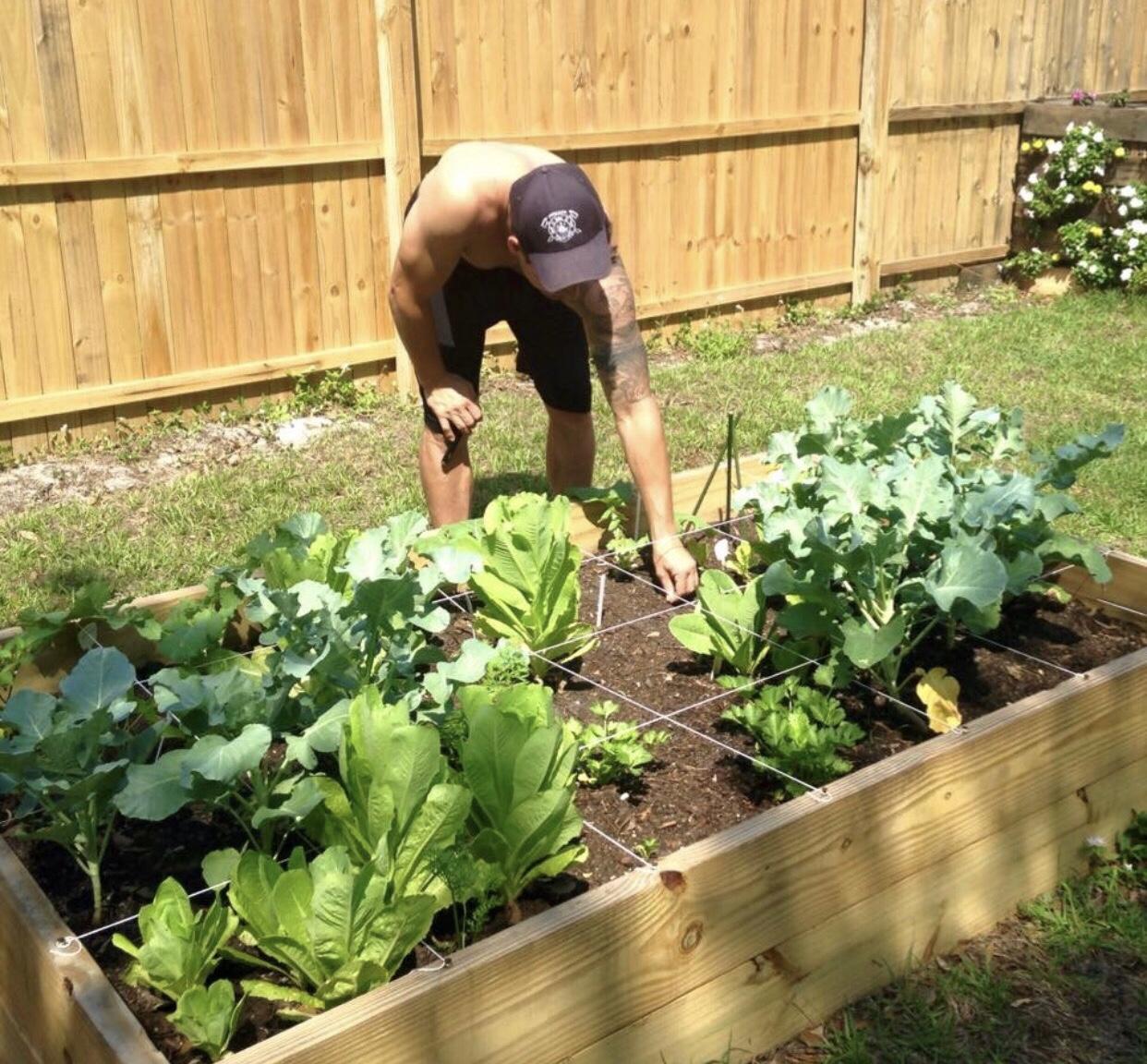 steve garden.jpg