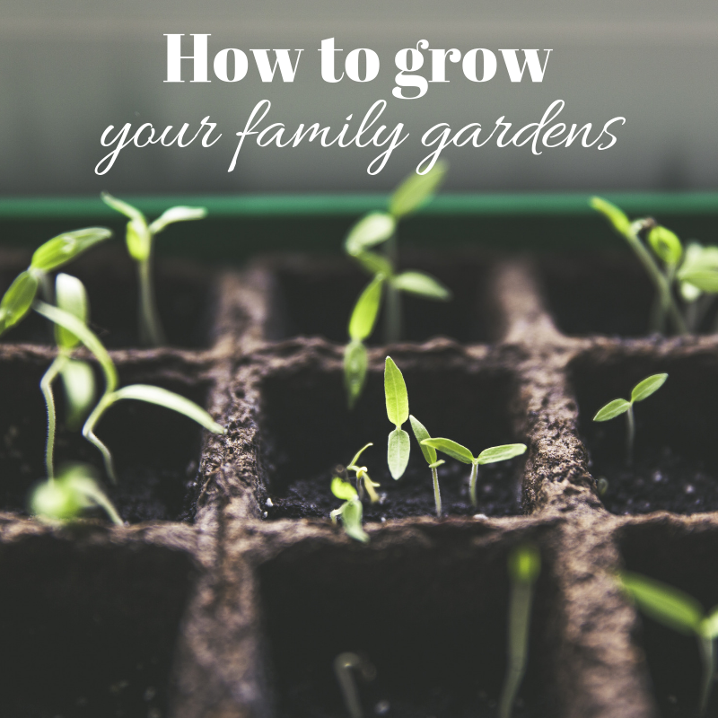 How%20to%20grow%20your%20family%20gardens.png