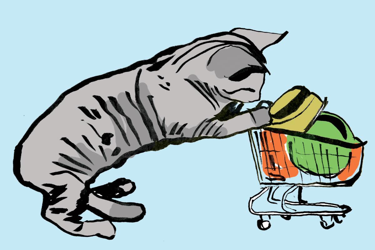 cartcat.jpg