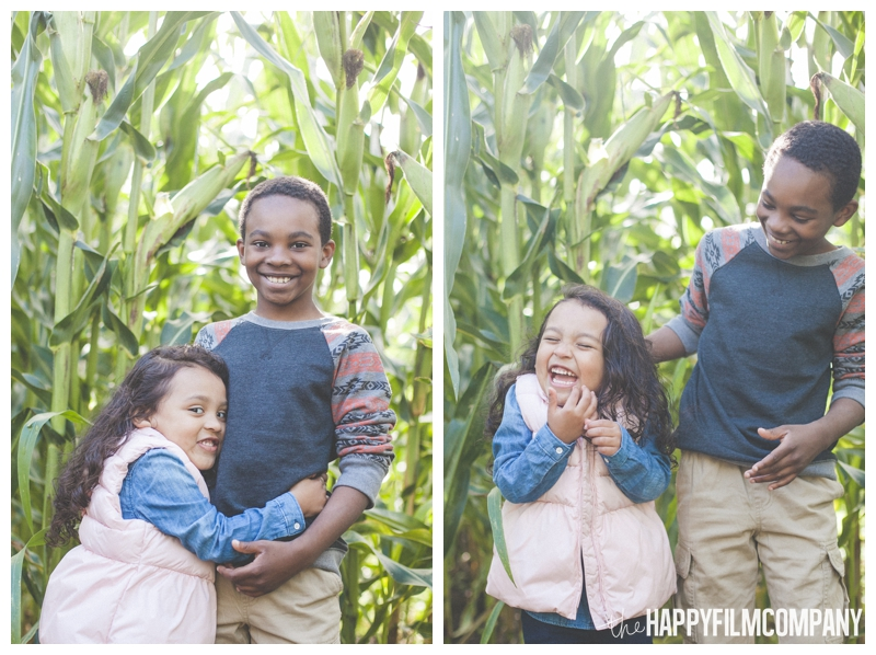 sibling portraits  - Seattle Family Holiday Photos - The Happy Film Company - Seattle Family Portraits in Corn Maze