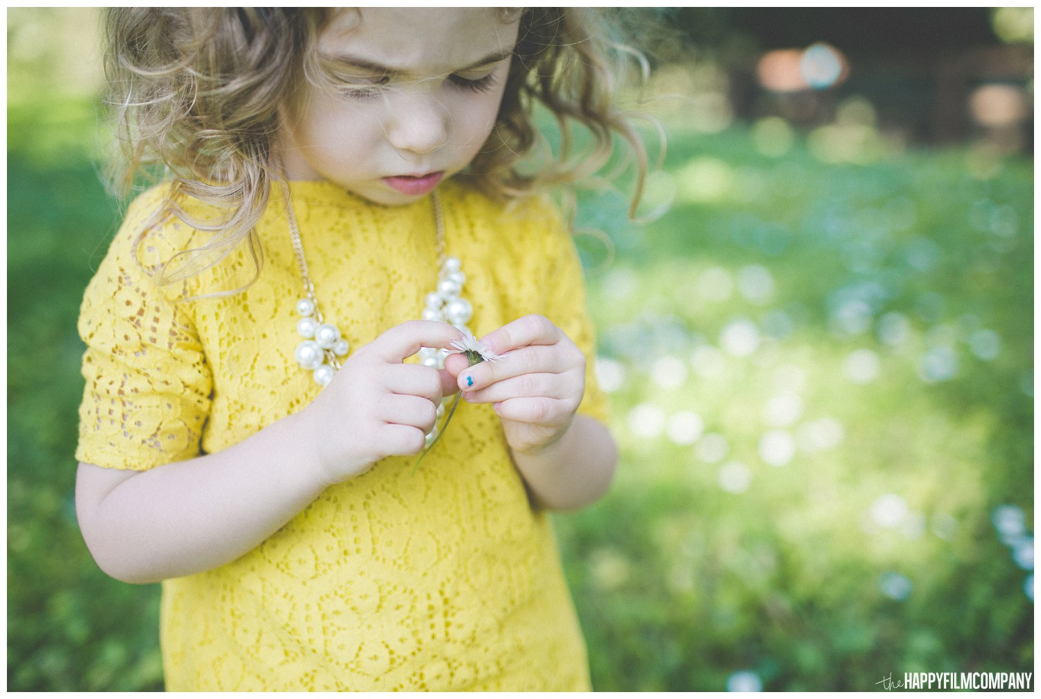 Little girl in yellow shirt, picking flowers - the Happy Film Company - Seattle Family Photography