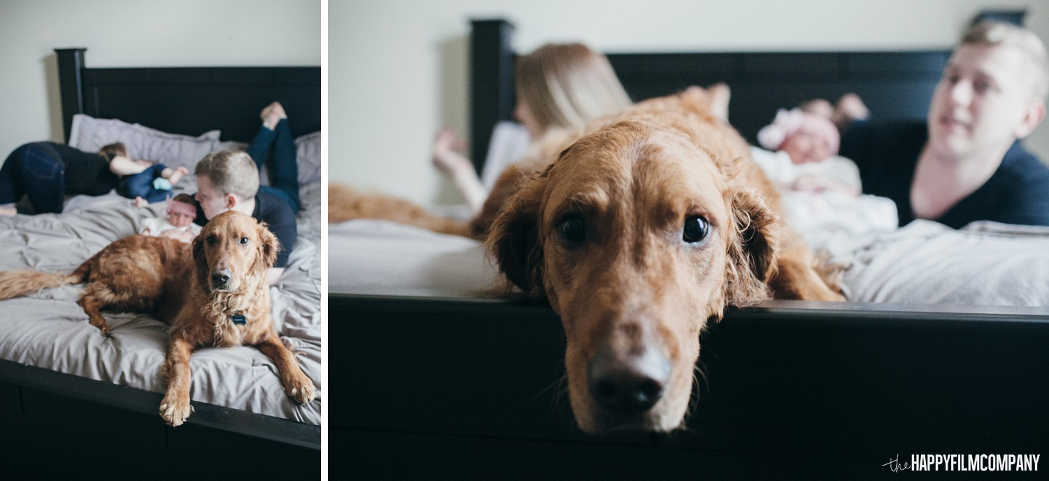 Seattle family photo with their pet dog - the Happy Film Company - Seattle Family Photos