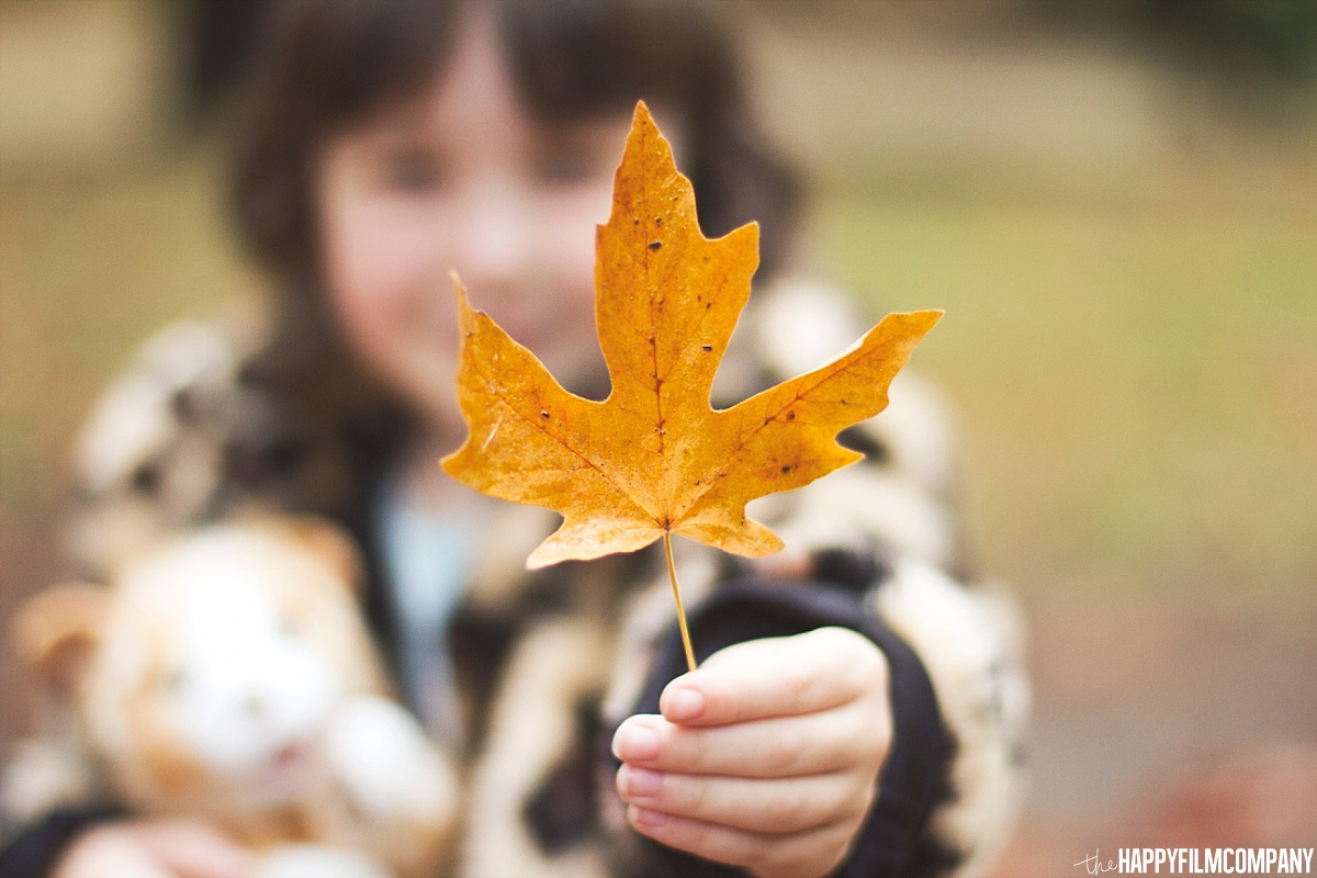 Little girl holding a leaf -  the Happy Film Company - Seattle Family Photos