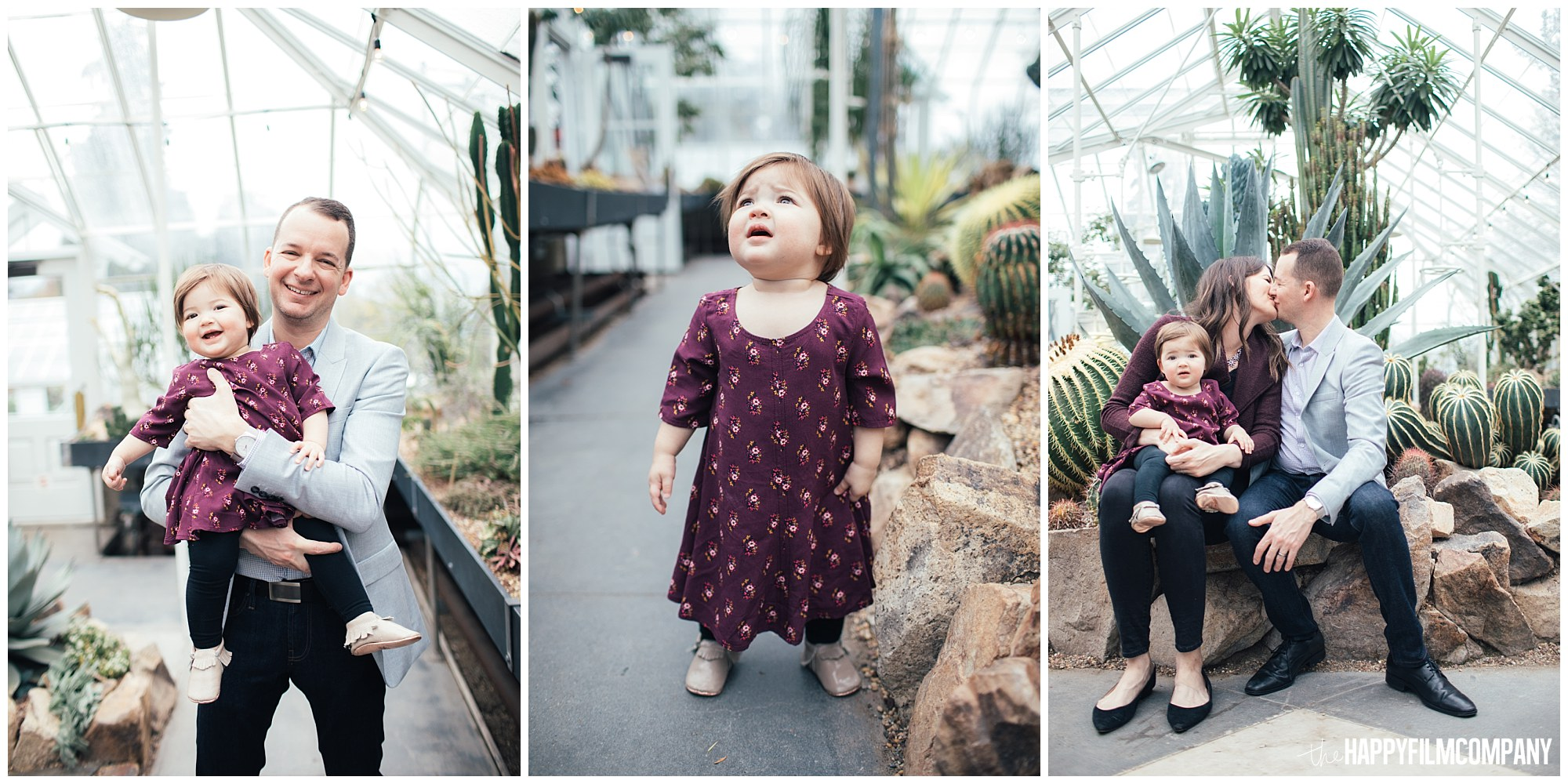 the Happy Film Company - Seattle Family Photos - Volunteer Park Conservatory - baby in greenhouse succulents and cacti